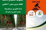 «آگهی مناقصه انجام عملیات کاشت و داشت گلخانه سبزی و صیفی 20 هکتاری مجتمع  کشاورزی  ابراهیم آباد  »(نوبت دوم)